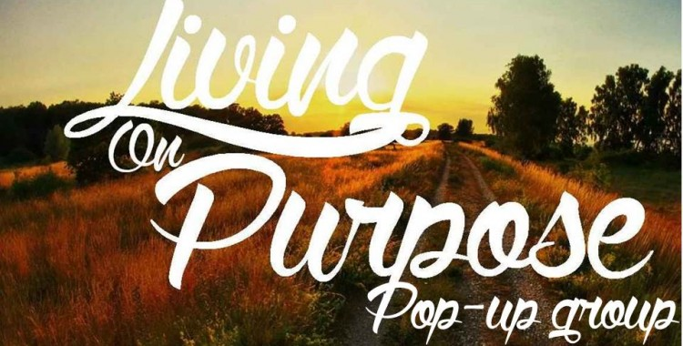 Living On Purpose Pop-Up Group